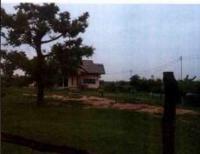 ที่ดินพร้อมสิ่งปลูกสร้างหลุดจำนอง ธ.ธนาคารกรุงไทย มหาสารคาม บรบือ หนองจิก