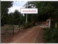 ที่ดินเปล่าหลุดจำนอง ธ.ธนาคารกรุงไทย มหาสารคาม วาปีปทุม หนองไฮ